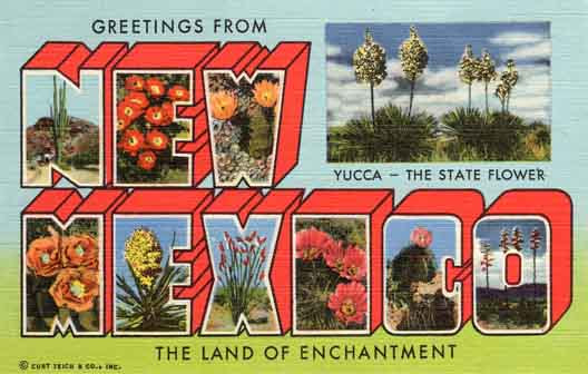 New Mexico large letter postcard checklist